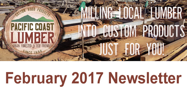 Our Latest Newsletter!