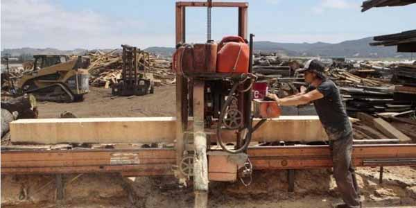 Pacific Coast Lumber gives dead Central Coast trees new life. Here's how it's done.